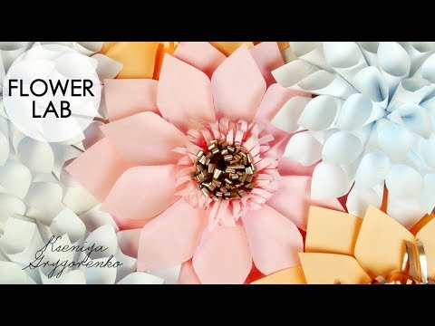 DIY Paper Flower Tutorial | How to make Backdrop Flowers