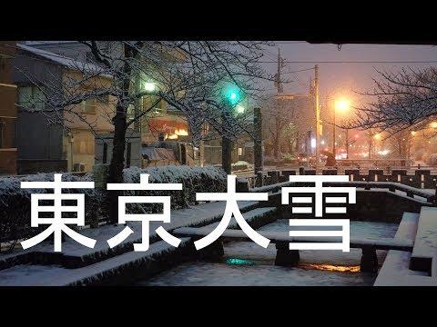 東京大雪です! 2018年1月22日