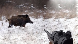 Охота #22 красивые выстрелы, на номере