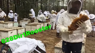 The Most Epic Beginner Beekeeping Workshop Ever - 628DirtRooster