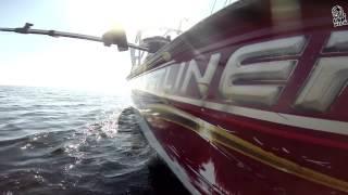 Crestliner Pro Anglers   Onega trolling(Троллинг на Онежском озере., 2014-08-11T09:14:57.000Z)