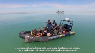 Operation Milagro III: Using Drones to Nab Poachers