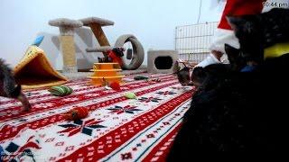 Santa visits the Reindeers