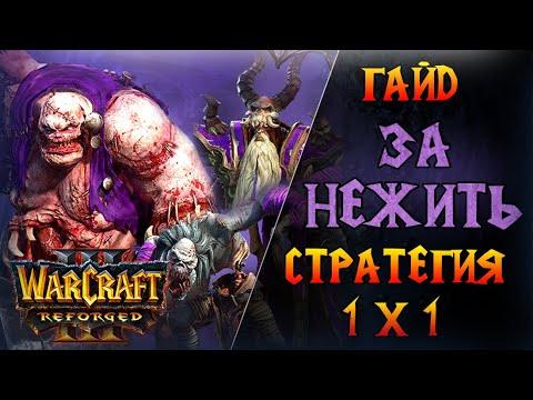 Warcraft 3 Reforged - Гайд за Нежить \\ Универсальная стратегия против всех рас