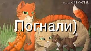 Кто ты из Котов-Воителей по числу рождения?