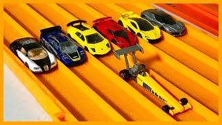 Top Fuel Dragster vs 6 Hyper Exotic Cars