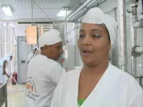 Novedosas producciones en fábrica de queso de Santiago de Cuba