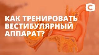 Что мы знаем о вестибулярном аппарате? – Эксперимент