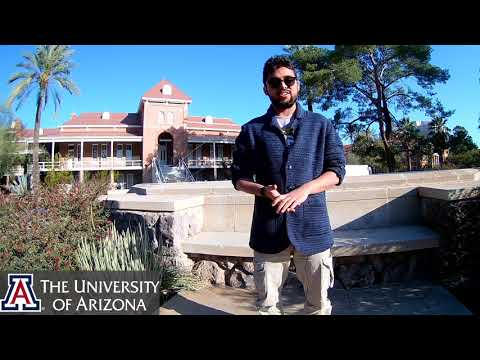 Study Computer Science at the University of Arizona