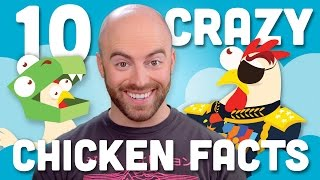 10 Incredible Facts About Chicken