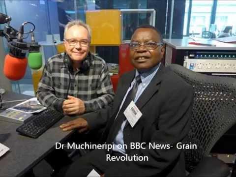 Grain Revolution - The wonder plant By Dr Muchineripi