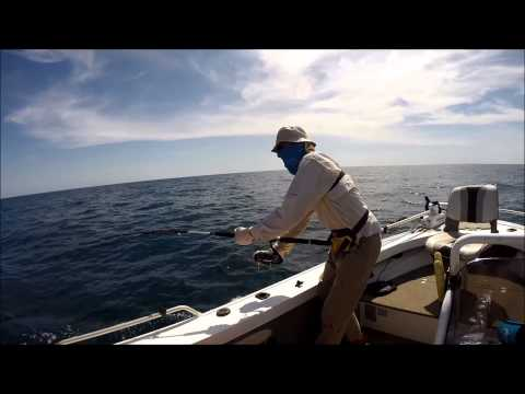 WEIPA FISHING Offshore 9 Mile Reef