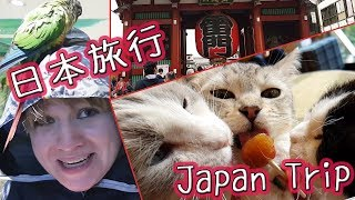Part 1 of my 2017 trip to Japan! Part 2: https://www.youtube.com/wa...