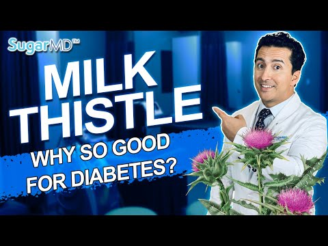 Milk Thistle: Top Benefits for Diabetics You Must Know! SUGARMD