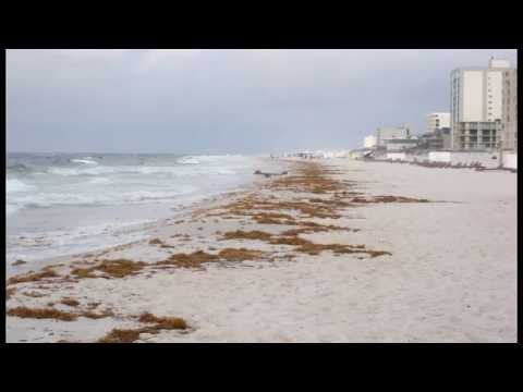 Pictures of the oil Spill in Gulf Shores Alabama Day 1