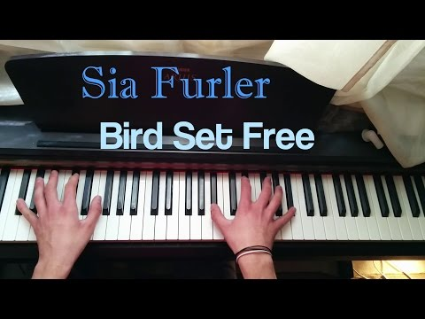 Sia - Bird Set Free (Piano Cover)
