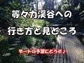 東京デートスポット!等々力渓谷の行き方♪ の動画、YouTube動画。