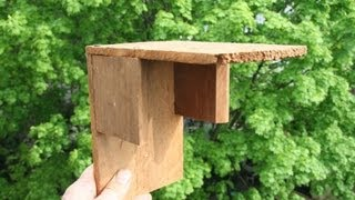 Build A Birdhouse For Ledge Nesters Gardenfork.tv