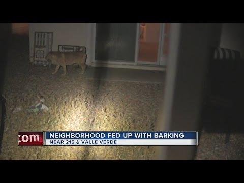 Henderson neighborhood fed up with dog's barking
