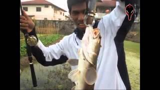 Repeat youtube video Fishonshop.TV Vol.1 : กอลลั่มตะลุยร่องสวน