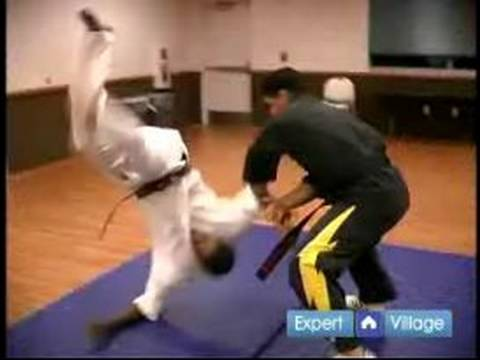 How to Become a Mixed Martial Artist : How to Defeat Multiple Attackers in Mixed Martial Arts