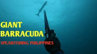 Ep11 | Giant Barracuda | Spearfishing Philippines | Northmen Spearo