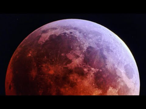 🌙 Live! Super Blood Wolf Moon Eclipse 2019 (Los Angeles, CA)