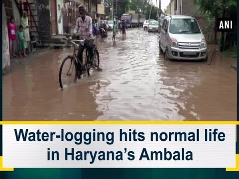 Water-logging Hits Normal Life In Haryana's Ambala