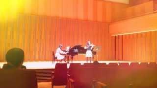 【弾いてみた】バイオリンとピアノで「風の通り道」を弾いてみた【スタジオジブリ】