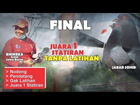 JABAR SOHIB Bhineka Juara 1 Tanpa Latihan Di Statiran Majenang || MERPATI | PIGEON RACE