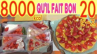【MUKBANG】 ONLY Strawberry!! ALL Qu'il fait bon's Strawberry Tarts! 124$, 20 Pieces 8000kcal[Use