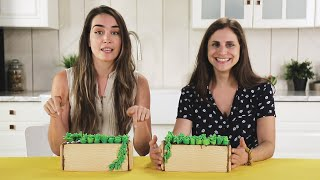We Tried to Build an Edible Succulent Garden! • Tasty