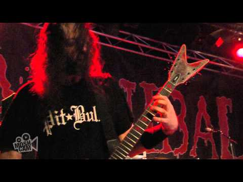 Cannibal Corpse - Priests Of Sodom (Live in Sydney) | Moshcam