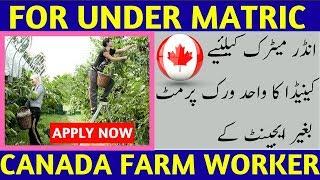 Canada Free Farm Worker Visa.