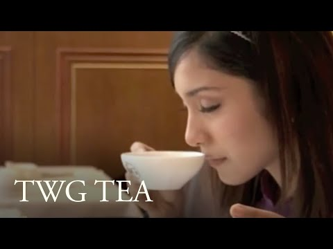 TWG Tea - Same But Different Channel 5