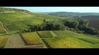 Vidéo champagne Côte des bar