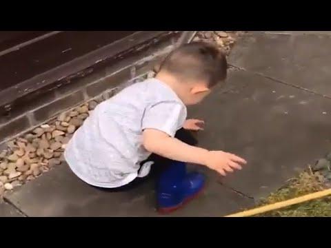 Fearless toddler picks up massive spider
