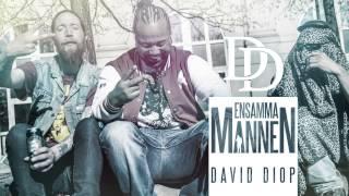 Salif David Diop The First Black Viking - Ensamma Mannen