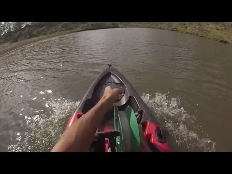 Shark Tows Kayak At High Speed 27-10-13 Shark Fishing Brisbane River Boys Style