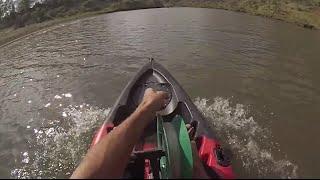 Shark Tows Kayak At High Speed 27-10-13 Shark Fishing Brisbane River Boys Style