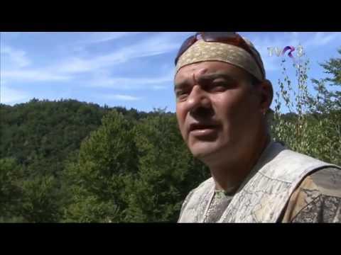 Natură şi aventură - Vânătoare de albine sălbatice, partea 1