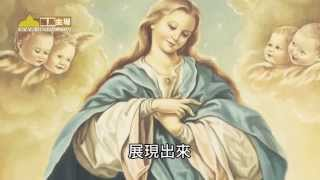 美哉! 無玷聖母(8-12-2014)