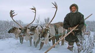 Кочевники Севера.