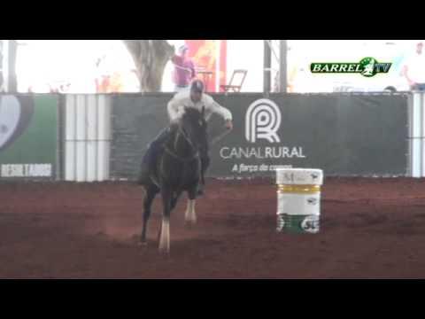 ILL Bethere Tux B2B: 17s456 - Castrados/ Congresso 2014