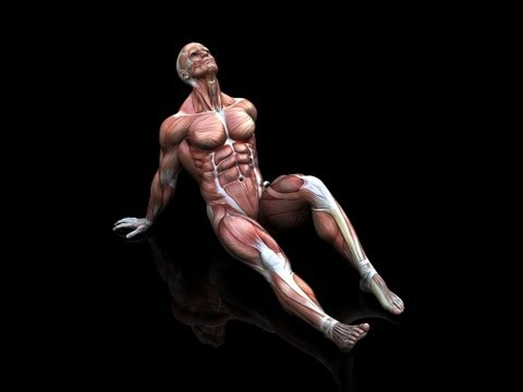The 411 on DOMS aka Delayed Onset Muscle Soreness