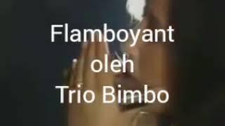 flamboyant-trio bimbo dan iin