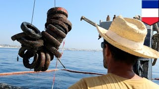 France cleaning up failed tire sea sanctuary - TomoNews