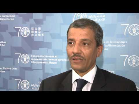 Remarks by the Minister for Economic Affairs and Development of Mauritania