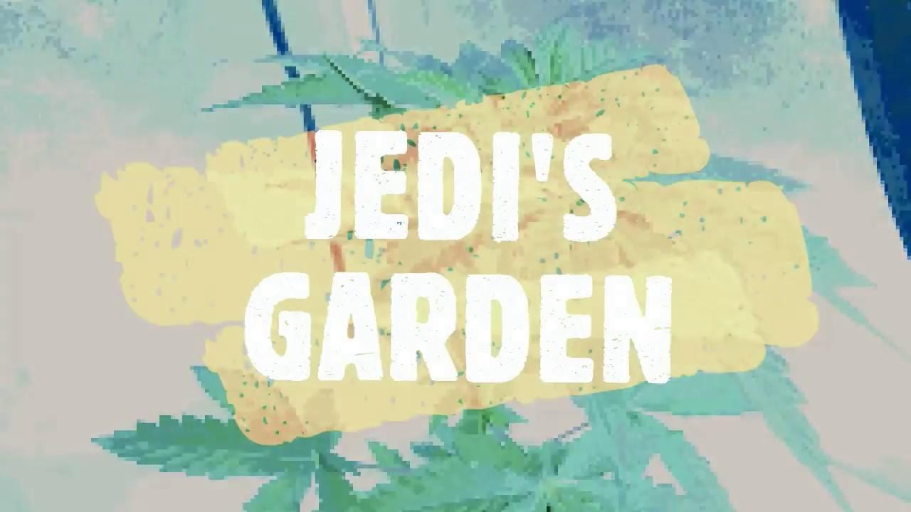 jedis garden episode 1 - Jedis Garden