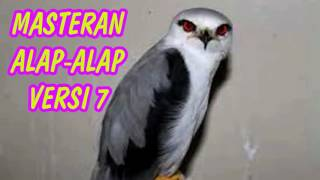 Download lagu DOWNLOAD SUARA MASTERAN BURUNG ALAP-ALAP VERSI 7 FULL HD